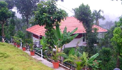 Glenora Home Stay